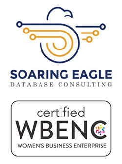 soaring eagle database consulting woman owned business